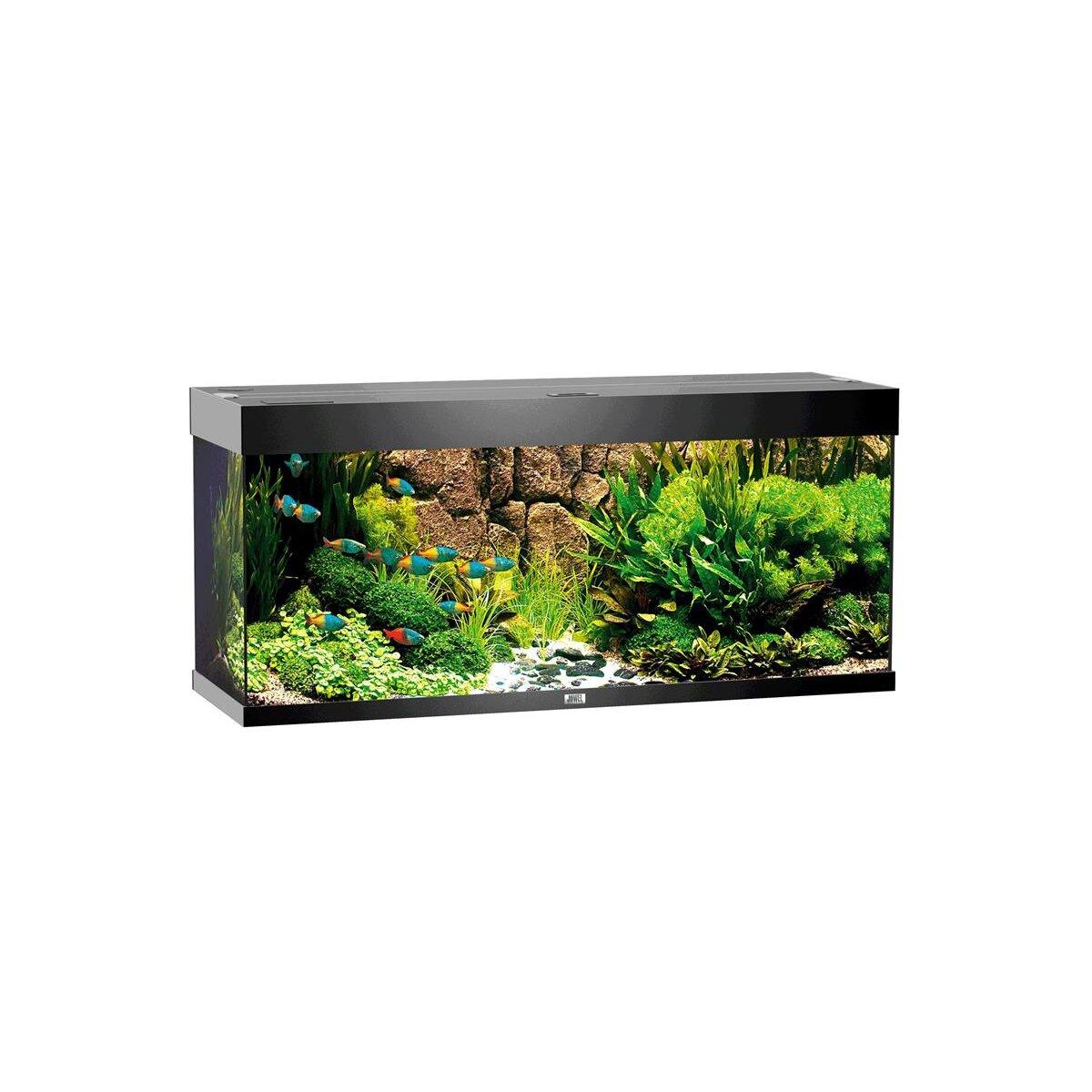 juwel aquarium rio 240 led schwarz chf. Black Bedroom Furniture Sets. Home Design Ideas