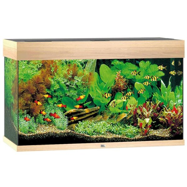 Juwel Aquarium Rio 125 LED hell